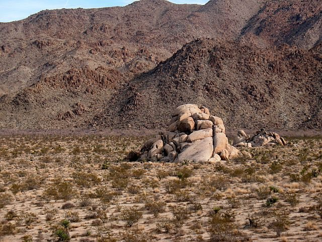 Rock Climbing Photo: Callous Boulder, Joshua Tree NP