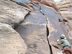 Rock Climbing Photo: Crack climbing (utah)