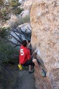 Rock Climbing Photo: Classic Melon (V3), Joshua Tree NP