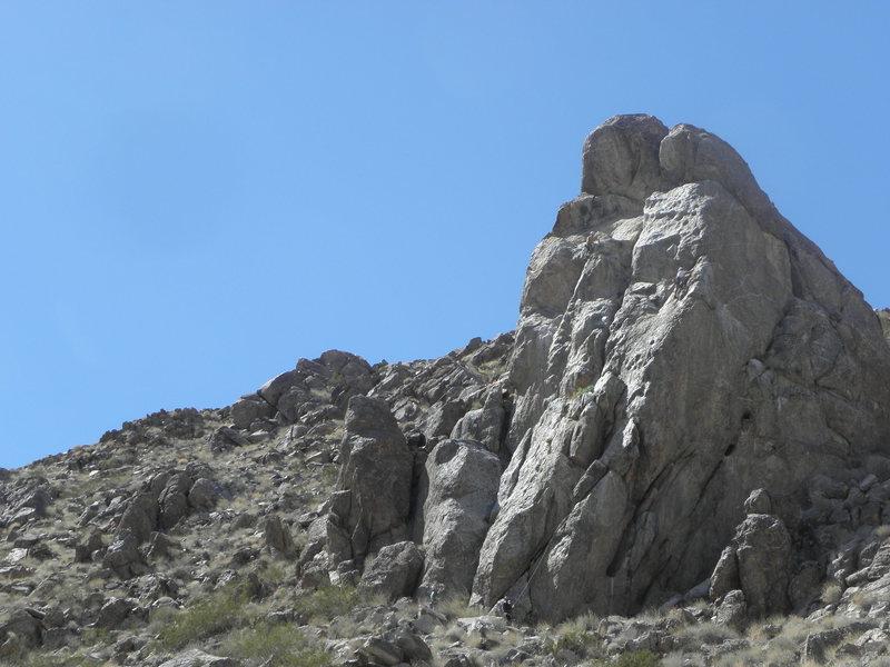 PETA Crag