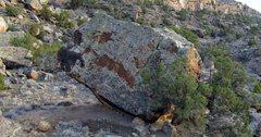 Rock Climbing Photo: Definite Boulder's west face.