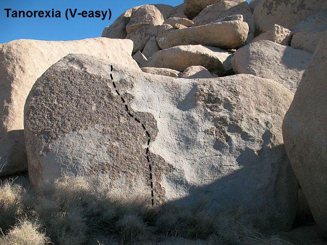 Tanorexia (V-easy), Joshua Tree NP