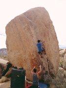 Rock Climbing Photo: Attempting white Rastafarian