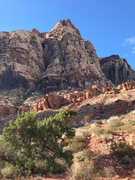 Rock Climbing Photo: This picture was taken from the trail where you tu...