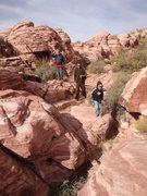 "Rock Climbing Photo: Clan ""Rock Ninja"" is making their way th..."
