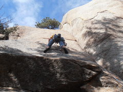 Rock Climbing Photo: I brought a few cams in case I didn't like the bol...