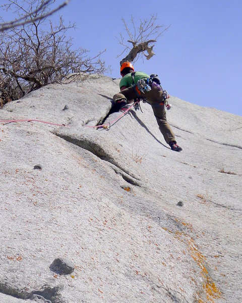 Rock Climbing Photo: The upper crack on Zesty