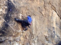 Rock Climbing Photo: Cochise Stronghold East: Zappa Dome: Weasels Rippi...