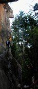 Rock Climbing Photo: TR'ing Saffron Spider
