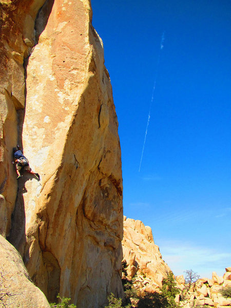 Rock Climbing Photo: Coarse and buggy