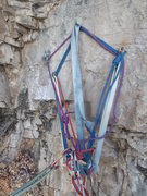 Rock Climbing Photo: 4 bolt anchor, looking at age of 3 bolts, likely 2...