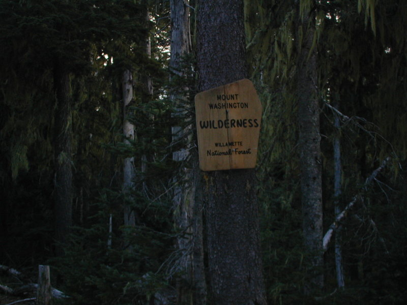 PCT trail head off of NF-811/NF500