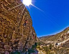 Rock Climbing Photo: Cujo, .11d @ First Pullout, Vegas.