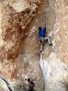 Rock Climbing Photo: Spider Line (5.11d), Joshua Tree NP