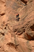 Rock Climbing Photo: Beginning final rappel in Pool Arch Canyon.