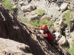 Rock Climbing Photo: Smokin the toad 5.8