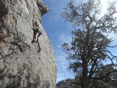 Rock Climbing Photo: Morgan Diefenbach on S.F.N.