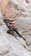 Rock Climbing Photo: Gotham Wall Owens