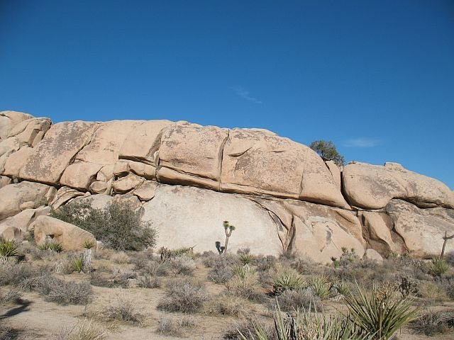 Rock Climbing Photo: Dinosaur Rock (W. Face), Joshua Tree NP