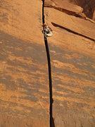 Rock Climbing Photo: nice an snug on a mellow solo