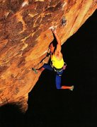 Rock Climbing Photo: Randy Leavitt on Mamba (5.13+ project), Joshua Tre...