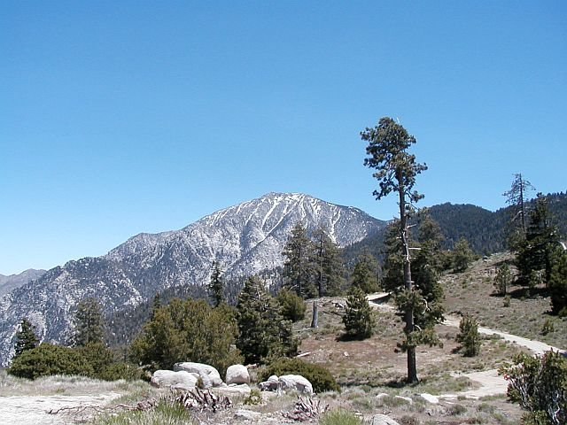 Rock Climbing Photo: Mt. San Jacinto from the north side of Black Mt.
