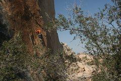 Rock Climbing Photo: 3-23-13