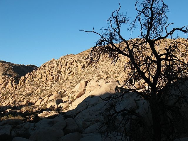 The initial view of The Refrigerator on the approach, Joshua Tree NP