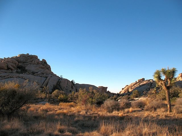 North of The Cornerstone is a great overlook onto the North Wonderland, Joshua Tree NP