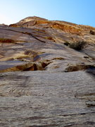 Rock Climbing Photo: Looking up at the stellar third pitch of Texas Tow...