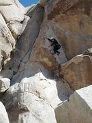 Rock Climbing Photo: Climbing Allen Steck Memorial (5.8)
