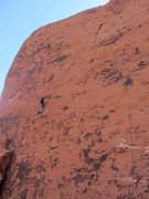 Rock Climbing Photo: Mike Stacy in the long diagonal seam of Behavior I...