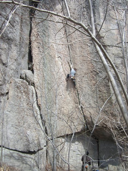 Rock Climbing Photo: Bushwhack