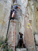 Rock Climbing Photo: Mokka sits and waits at the base of a route while ...