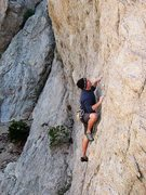 Rock Climbing Photo: Starting up The Hired Gun (5.11a), Williamson Rock