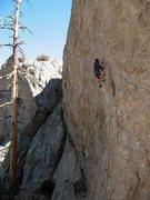 Rock Climbing Photo: Chuck on The Hired Gun (5.11a), Williamson Rock
