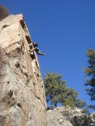 Rock Climbing Photo: Steve Thomas on Antagonism.