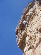 Rock Climbing Photo: Dave Earle leading Crab Nation.