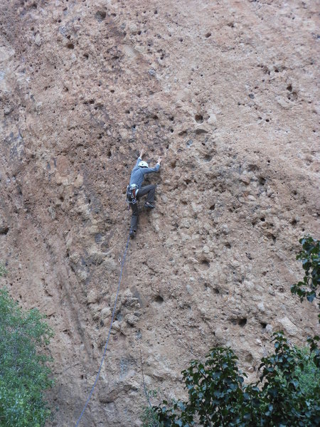 Rock Climbing Photo: Sandy leading the bolted line, near the 2nd bolt, ...