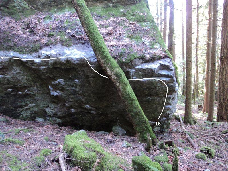 Rock Climbing Photo: 16. Tree Hugger