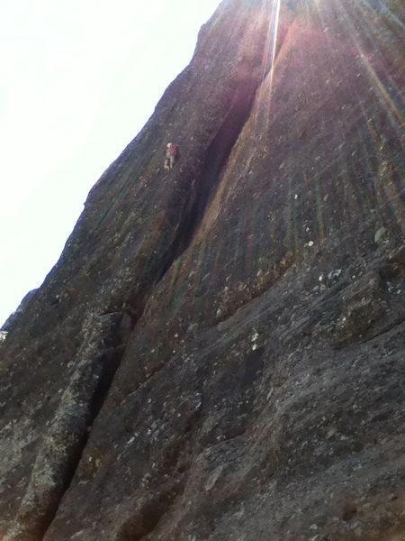 Rock Climbing Photo: Taylor on Darwins Rib