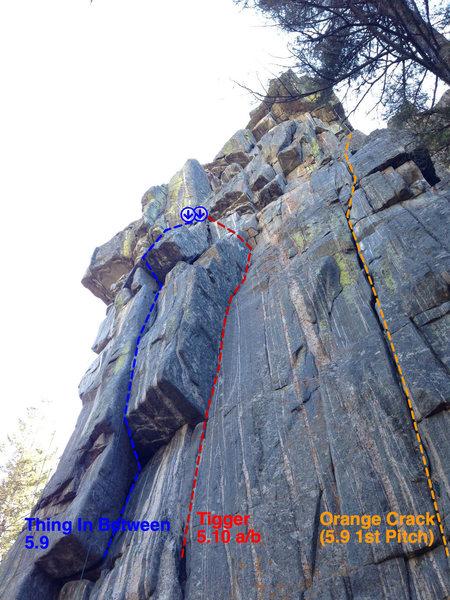 Rock Climbing Photo: Beta photo for Tigger