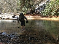 "Rock Climbing Photo: Apparently the ""felled tree bridge"" ment..."