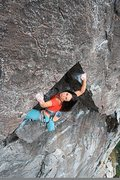Rock Climbing Photo: Sanam warming up on RocknRolla 5.9. Candy Land, Bo...