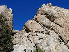 Rock Climbing Photo: Gold Bug (5.8), Holcomb Valley Pinnacles