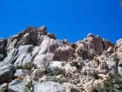 Rock Climbing Photo: Dairy Queen Wall, Joshua Tree NP