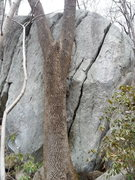 Rock Climbing Photo: Cool boulder crack that is taller than it looks.  ...