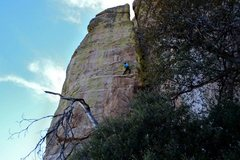 Rock Climbing Photo: Aaron Mike high on the first pitch