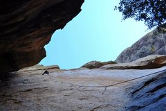 Rock Climbing Photo: Less than half way up