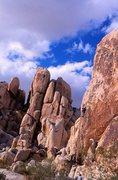 Rock Climbing Photo: Goodbye Mr. Bond (5.10c), Joshua Tree NP. Photo by...